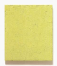 pideritzeisiggrüngelb, januar – november 2005, 89 x 76 cm, eitempera + ölfarbe auf holz